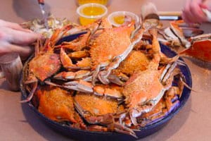 About-Crabs